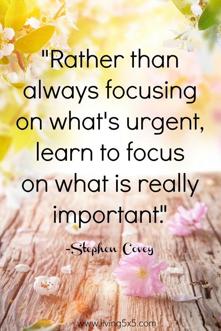 Inspirational Quote of the Week - Rather than always focusing on what's urgent, learn to focus on what is really important. -Stephen Covey