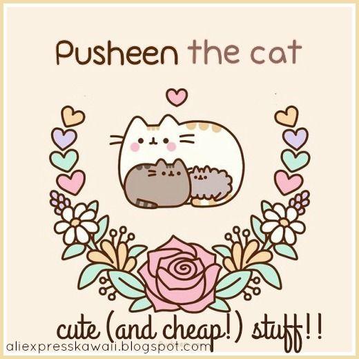 Aliexpress Kawaii Shopping: Pusheen the Cat! Cute (and cheap) Stuff!