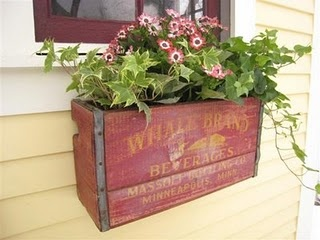 Old crate re-purposed into flower box planter...very pretty and adds more color!