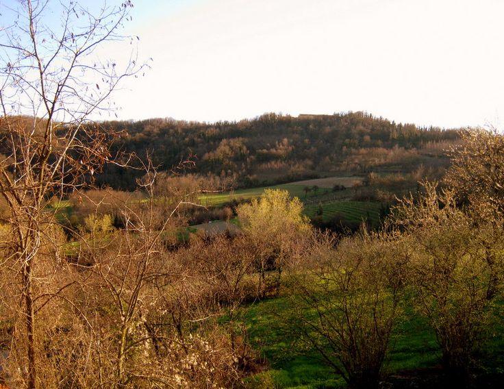 Canonica's garden and hills of Monferrato