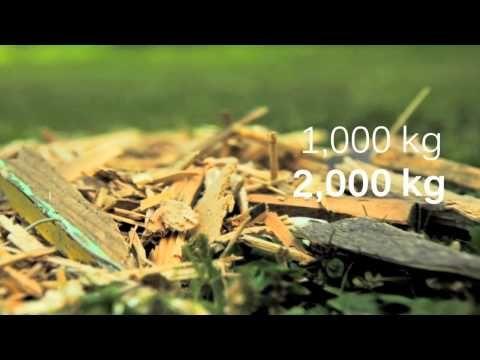 Puun kierrätys