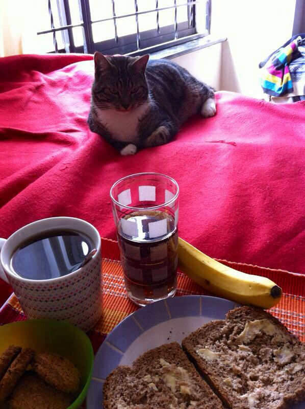 Mi nieto Claudio me acompañó a tomar desayuno.
