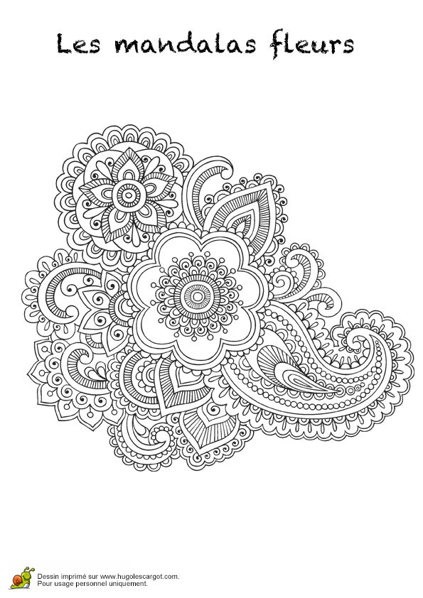 3269 best Pewter images on Pinterest Arabesque, Coloring pages and - new coloring pages blood blood consists of plasma and formed elements