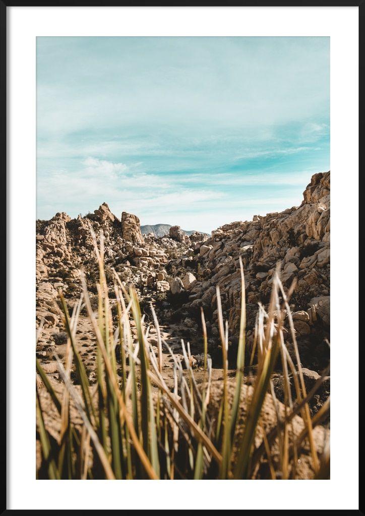 Plakat Joshua Tree Fotografia Ukazująca Piękno Natury W