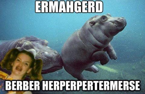 ahahahaha 'baby hippopotamus'Baby Hippo, San Diego Zoo, Animal Baby, Happy Baby, Baby Animals,  Rivers Horse'S, Animal Babies, Cute Babies,  Hippopotamus Amphibius