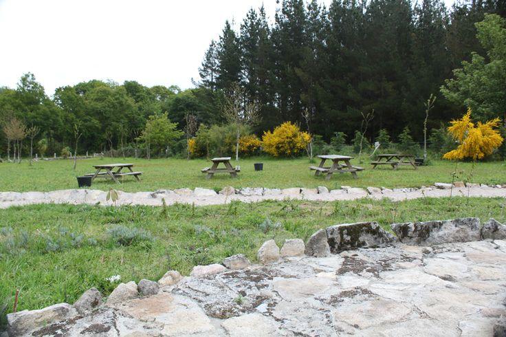 Zona de descanso para una comida, merienda en las instalaciones de parque zoológico de Avifauna.