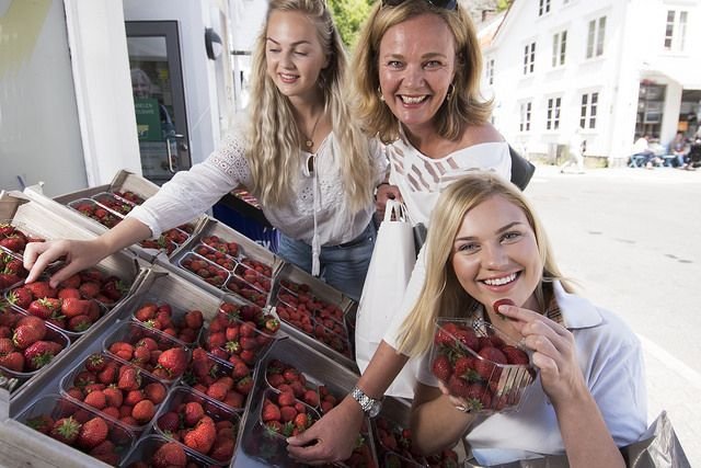 Food traditions Southern Norway has a rich culinary heritage where top quality local ingredients and unique regional specialities are often the recipe for success. The strawberries are very sweet.  Photo: Peder Austrud©Visit Southern Norway