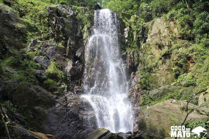 http://coconomato.com.br/cachoeira-escondida-de-paranapiacaba/