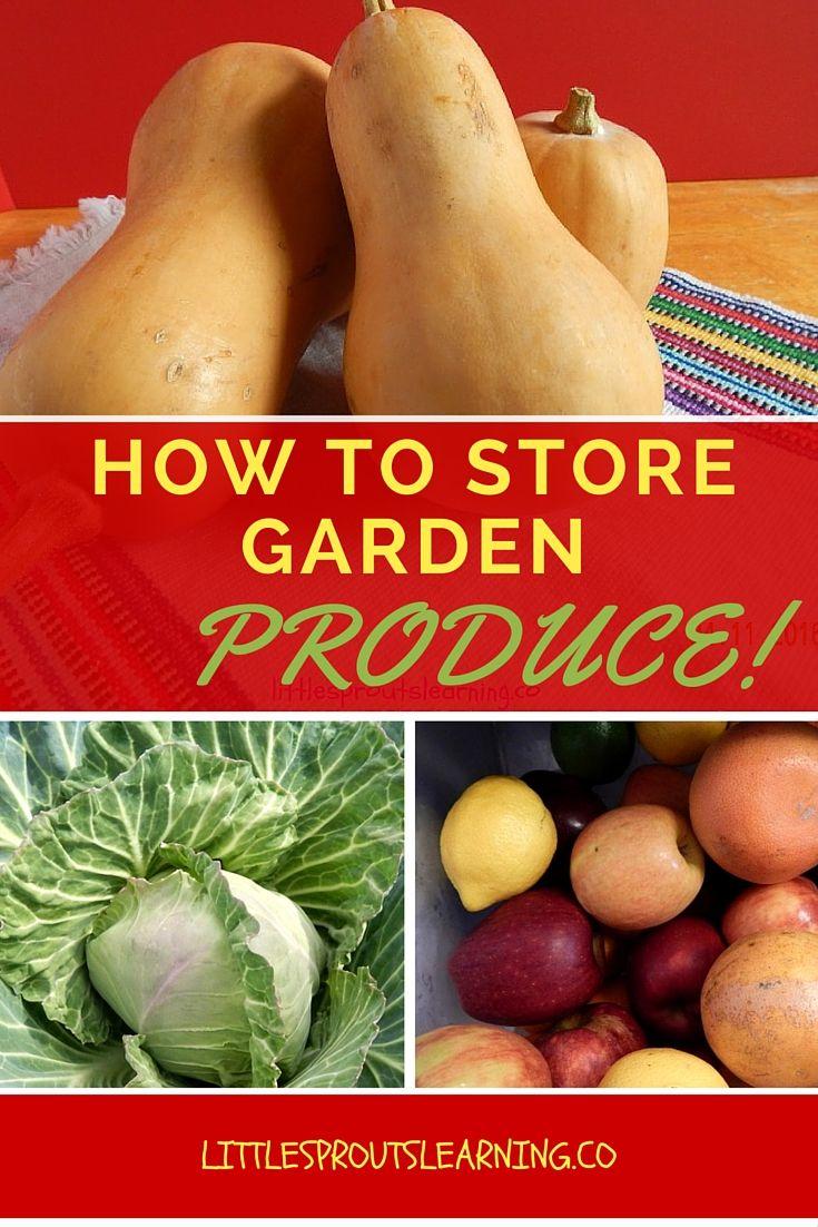Kitchen Garden Produce 17 Best Images About Gardening On Pinterest Gardens Vegetables