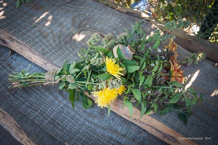 Chrysanthemum, poppy, basil, lemon balm.