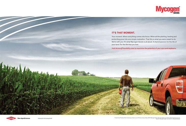 that moment farmer - Sök på Google