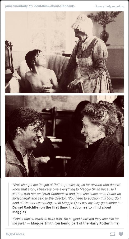 Harry Potter Daniel Radcliffe Maggie Smith
