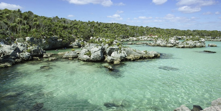Xel-ha Lagoon! Dreamy!