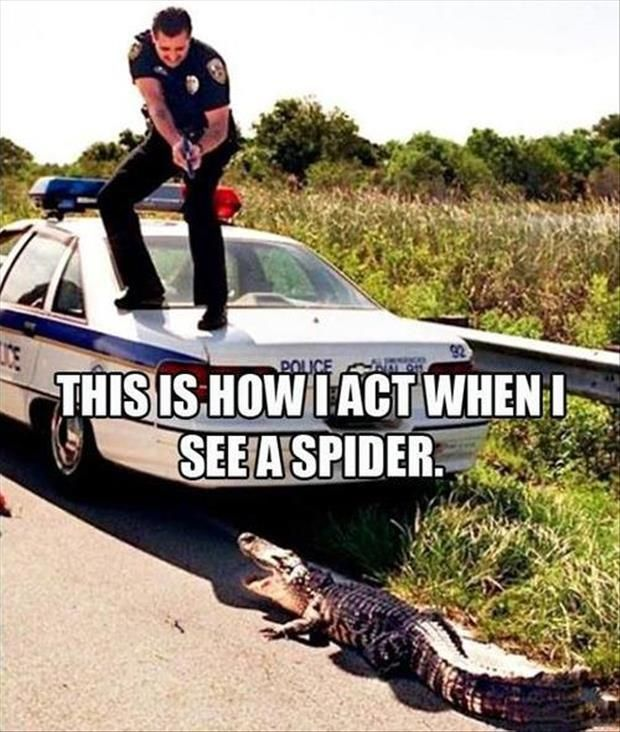 Funny Pictures Of The Day – 82 Pics ... this cop must not be from Florida. LOL!