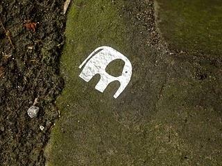 elephant graffiti/prettifying pavements