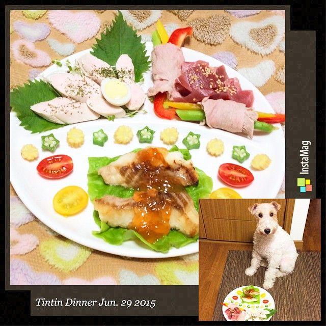 今日の #坦々飯 . 鶏ささみのボイル ドライパセリを散らして うずらのゆで卵 紫蘇 ブロッコリースーパースプラウト . グリーンアスパラと赤黄のパプリカの豚ばら肉巻き マグロの刺身 皮むき炒りごまを散らして . サメ肉のグリエ メロンゼリーのソース 茹でたオクラとベビーコーン 赤黄のプチトマト サンチュ . . Today's #TintinDinner . Boiled chicken fillet Sprinkle the dry parsley Boiled quail egg Beefsteak plant Broccoli Super Sprout . Sliced pork back ribs winding of paprika and  green asparagus Sashimi tuna Sprinkle the sesame roasted peeled . Grilled shark meat Melon jelly source Boiled okra and baby corn Red yellow cherry tomatoes…