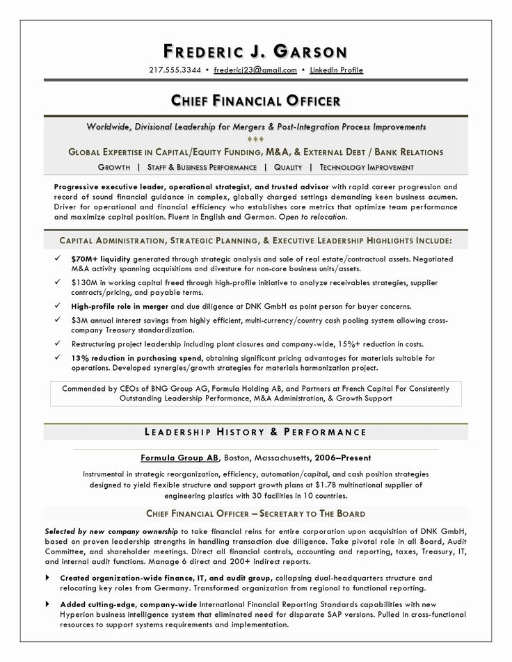Chief Financial Officer Resume Example Fresh Resume Writer