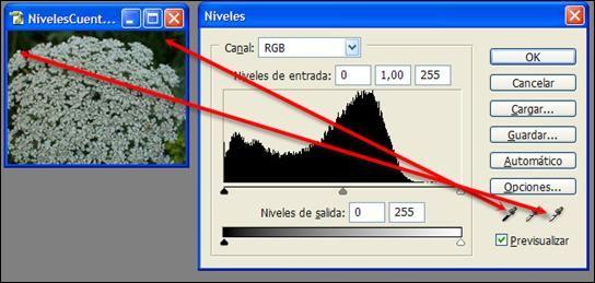 http://www.dzoom.org.es/corregir-la-gama-tonal-con-photoshop-la-herramienta-niveles-ii/