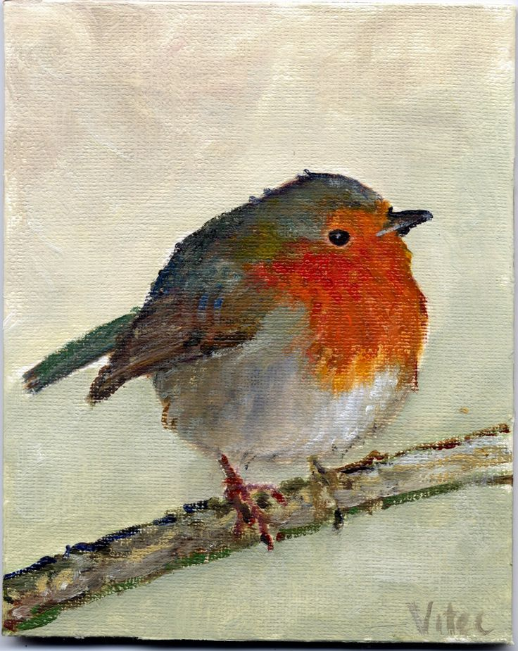 robinBird Paintings, British Robin, Birds Art, Birds Painting, Art Photographers, Art Inspiration, Red Robin, Arty Stuff, Robin Painting