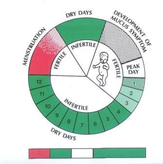 what is natural family planning method