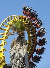 Ride the cobra at ratanga junction