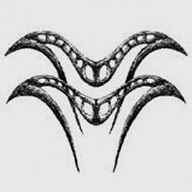 Kova Burcu Dövme Tattoo