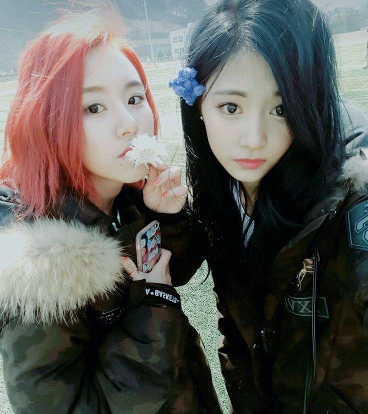 Twice kpop Chaeyoung tzuyu