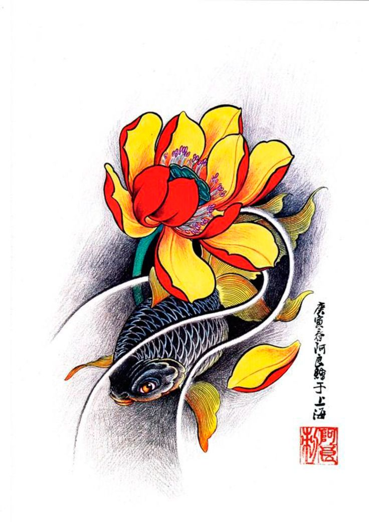 1000 images about koi tattoo designs on pinterest fish sketch sketchbooks and koi dragon tattoo. Black Bedroom Furniture Sets. Home Design Ideas
