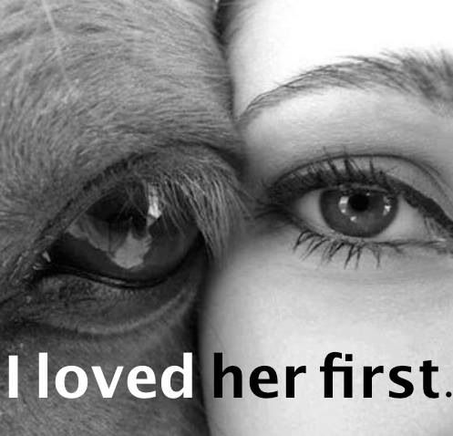 I loved her first. #Horseandgirl | Horses want to be FREE ...
