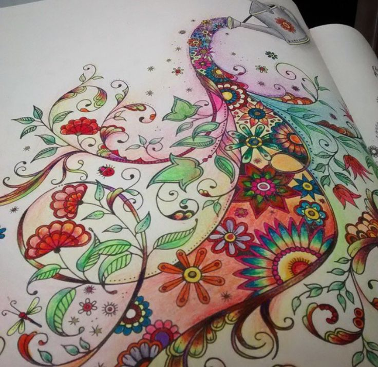 Watering Can Secret Garden Adult Coloring Books