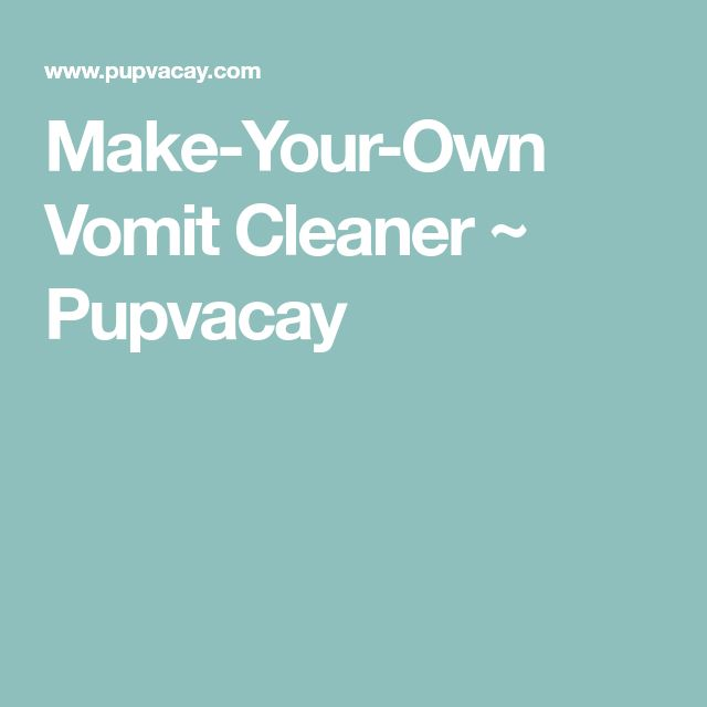 Make-Your-Own Vomit Cleaner ~ Pupvacay