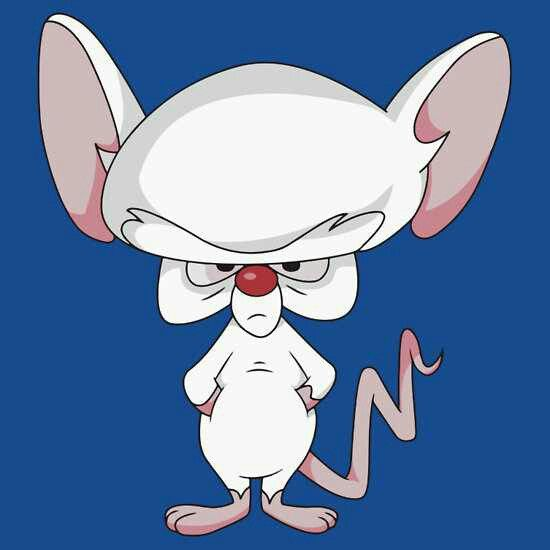 84 Best Pinky And The Brain 20th Anniversary Images On