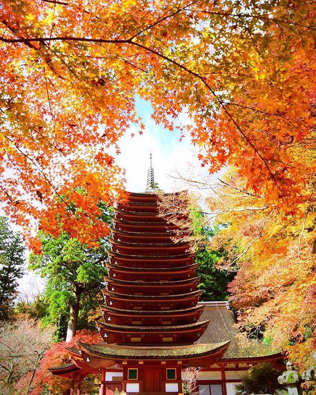 Tanzan-Jinja Shrine, Sakurai, Nara, Japan, 談山神社, 桜井, 奈良, 日本, autumn foliage