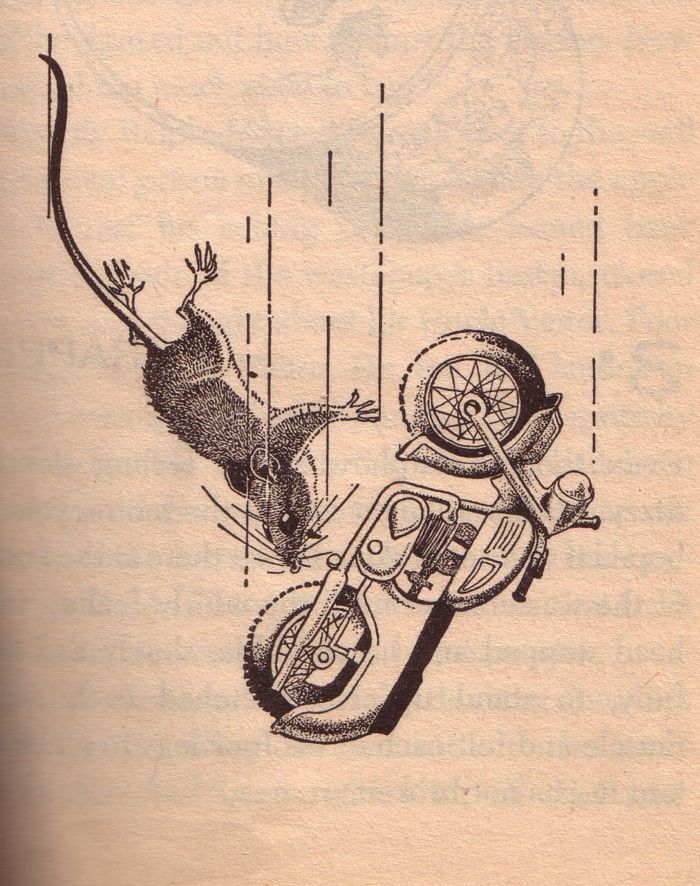 13 best mouse and the motorcycle images on Pinterest | Mouse and ...