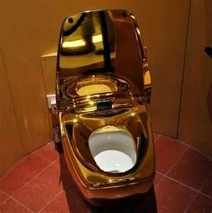 gold plated toilet seat. Gold plated toilet  literally the lap 168 best Make My Toilet Pretty images on Pinterest Toilets