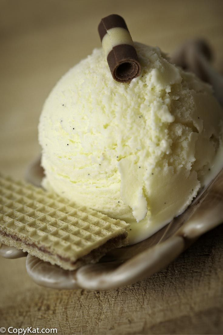 No Churn Vanilla Bean Ice Cream