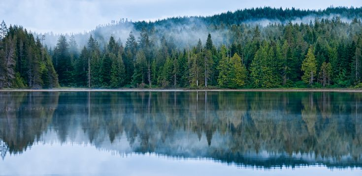 When we were at Morton lake near Campbell river it rained most of the time but there were brief breaks when the rain stopped and the clouds slowly rolled over the lake and forest.