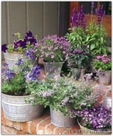 Galvanized Bucket Container Garden Love The Monochromatic Color