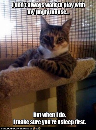 advice animals memes  - Animal Memes: The Most Interesting Cat in the World: Oh Good, You Can Play Too