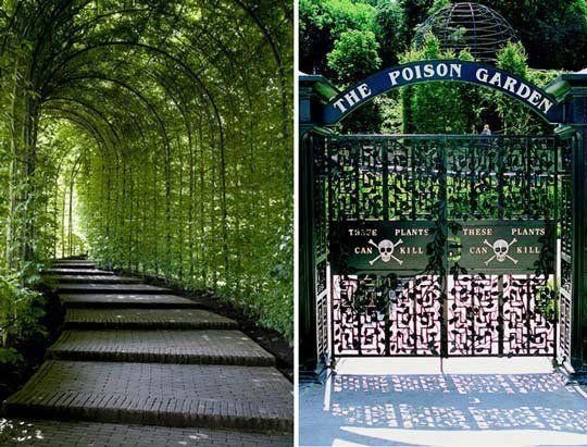 The Poison Garden at Alnwick Castle, England. The ...