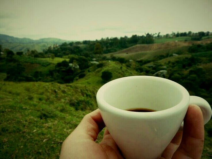 """...""""Quizá no el mejor café del mundo, pero sí el que mejor mira""""..."""