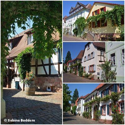 Heute zeige ich Euch einen meiner Lieblingsorte, Rhodt unter Riedburg im Landkreis Südliche Weinstraße in Rheinland-Pfalz. Als wir dort morgens ankamen, war der Himmel klar und blau und die Luft de… #RhodtUnterRietburg