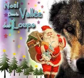 mes idees de sorties sympa: Noël dans la Vallée des Loups
