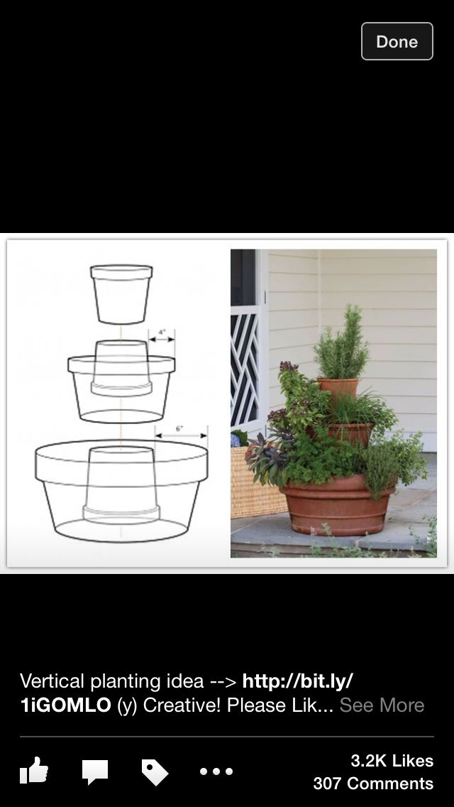 Great idea. I think I could do something like this with my herbs to have more room on my patio.