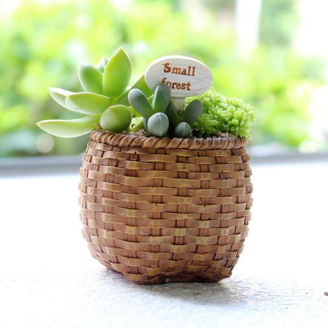 Resina criativo Vaso Cesta Plantador de Avelã Pinho Cone À Venda Bonito Pastoral Plantas Suculentas Vaso de Flores Frete Grátis