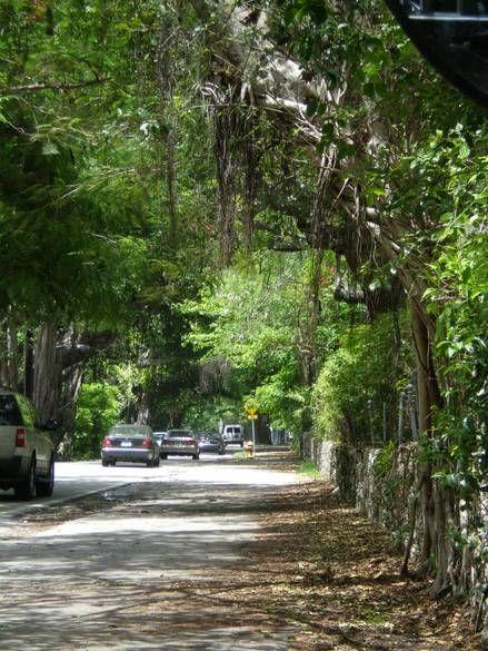 Main Highway, Coconut Grove (Miami, Florida)