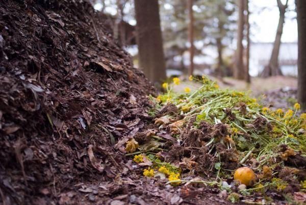 Compostagem é o processo de transformação do lixo orgânico em adubo. Com o uso de fertilizantes químicos muito deste uso parecia obsoleto mas tem sido resgatado com este novo conceito de agricultura orgânica que se espalhou pelo mundo....