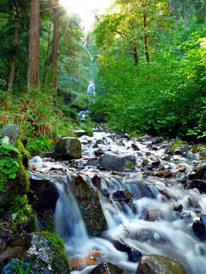 13 Hidden Waterfalls in Oregon
