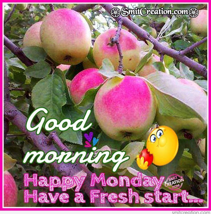 Good Morning, Happy Monday, Have A Fresh Start