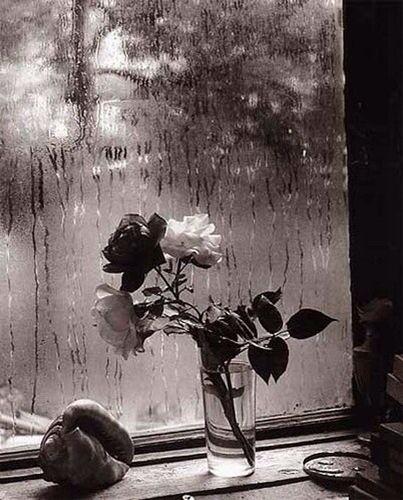 A veces el gorgoteo del agua era suficiente para despeinar el día. Cada mañana mismo ritual, misma ventana, con lluvia, con nieve, soleada, pero en cuanto traspasaba la mirada y la dejaba colgando del tendal, unas gotas oscuras, aromáticas, resbalaban por mis papilas, todo un mundo de encuentros eran posibles, y ante mí no había meses, no había días, todo era abril, todo era primavera.  A veces el olor inundaba todo y se escapaba por la ventana, y eso era suficiente para querer correr…